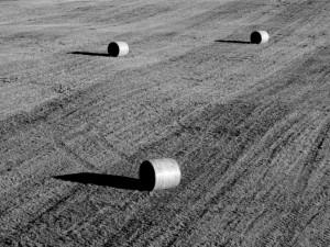 Bilder aus der Provinz: Strohballen